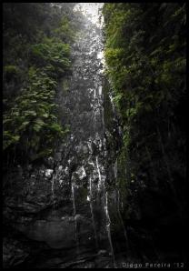 25 Fontes Falls I