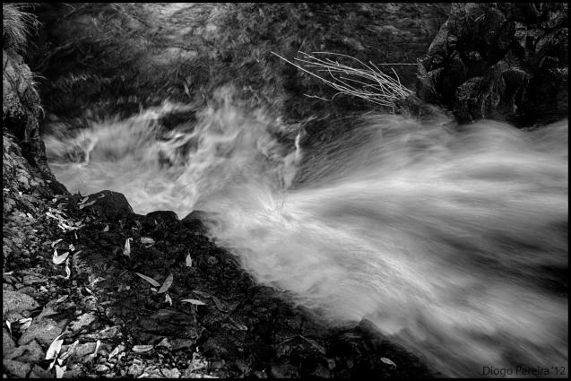 Lurking in the depths below lifeinaphotograph