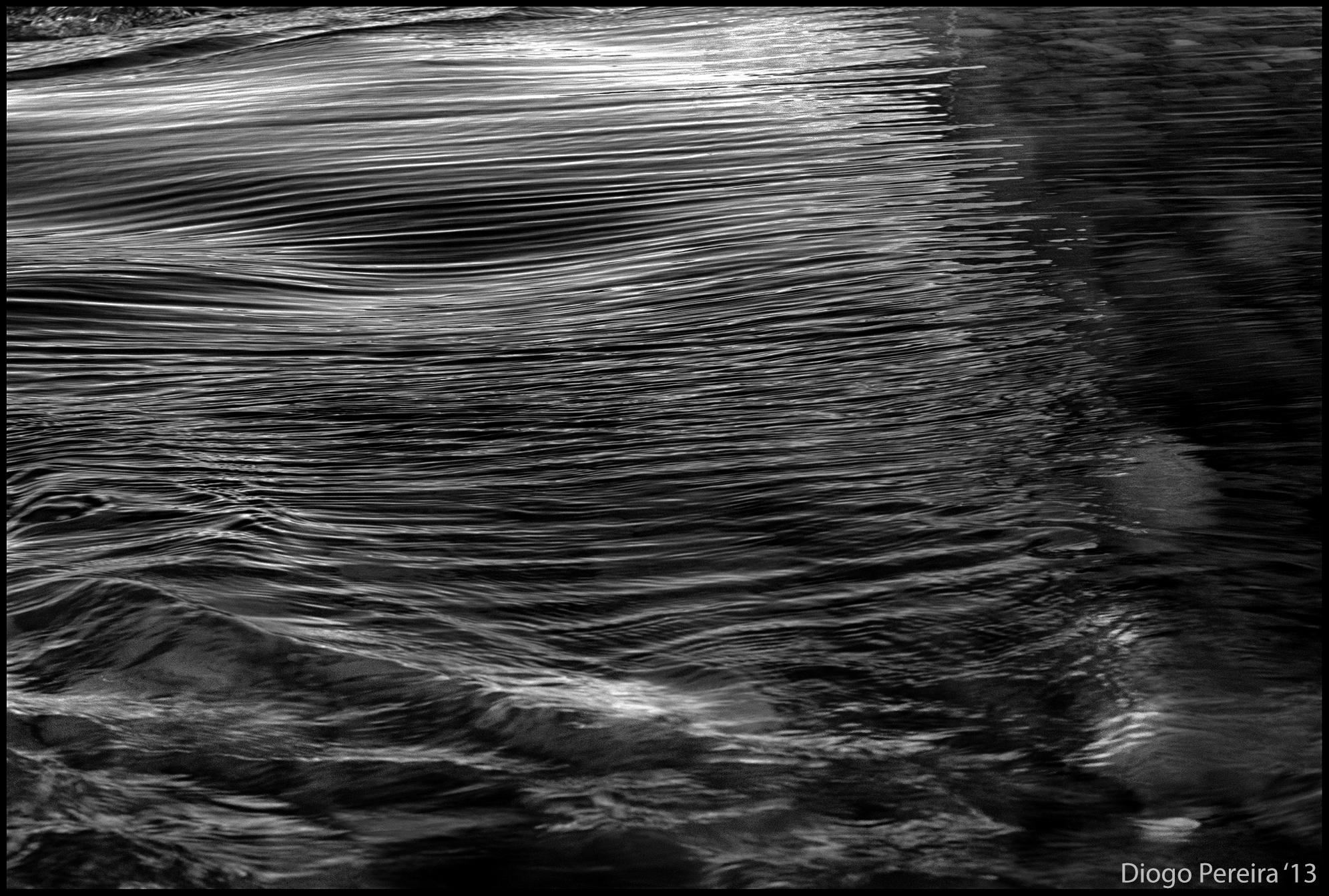 Whale texture - photo#6