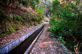 The beginning of the levada!