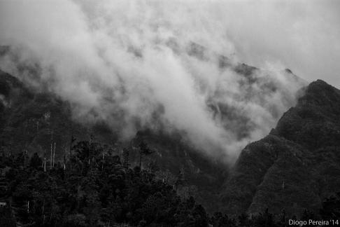 Foggy Mountains 4