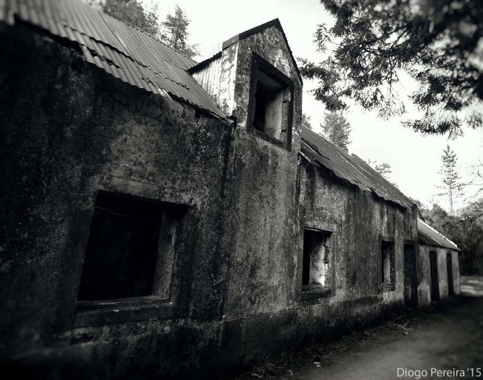 abandoned eerie house