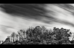 ephemeral art photography long exposure