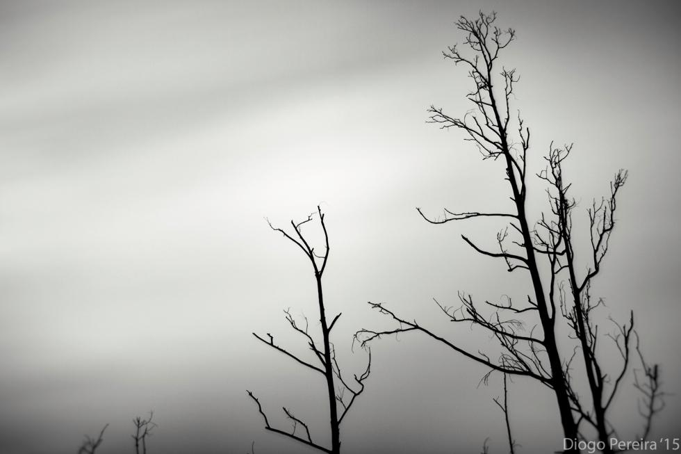 minimal landscape photography