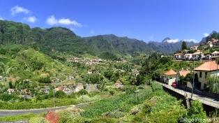 Feiteiras Madeira