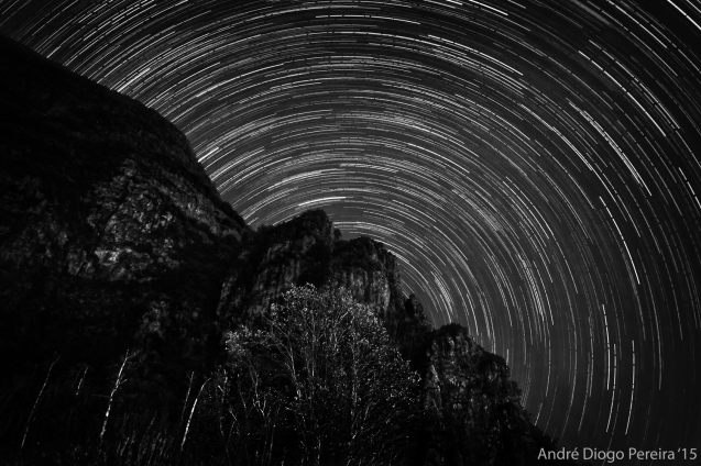 black and white startrails